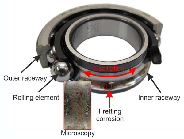 Fretting-Wear-Final-Drive-Example_of_fretting_schwack-crop