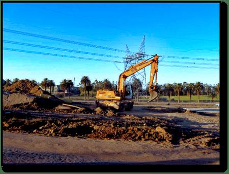 excavator-palm-trees-square-gray-market-machine-blog-1